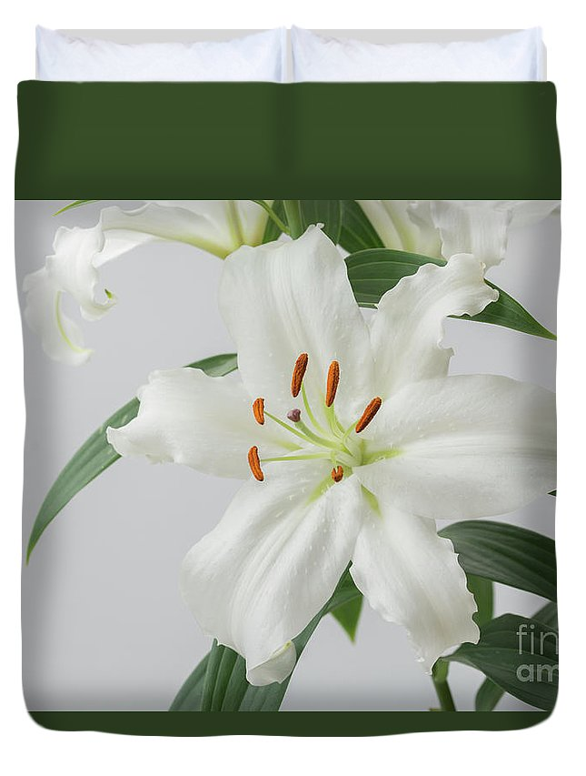 White Lilies Duvet Cover featuring the photograph White Lily 2 by Steve Purnell