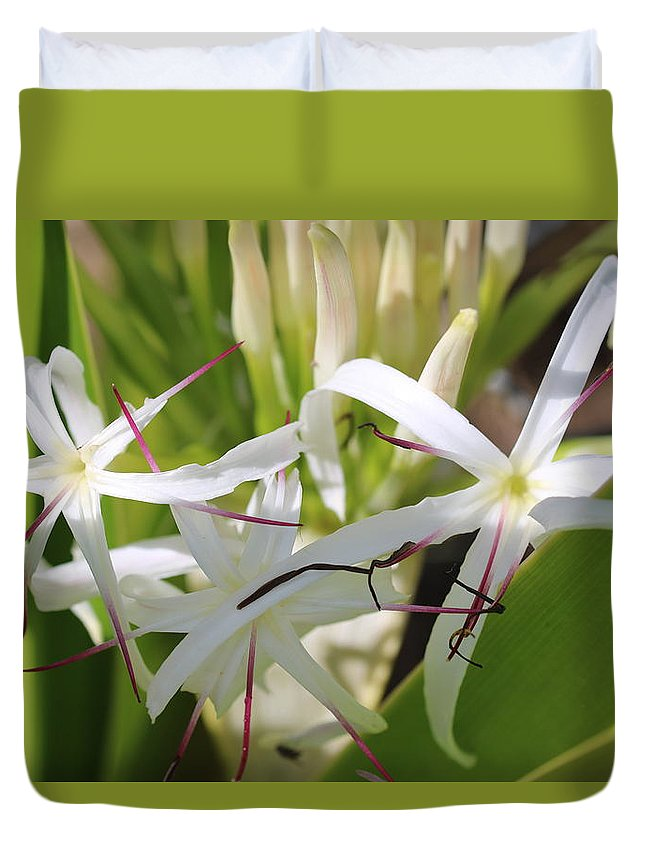Amaryllis Duvet Cover featuring the photograph White Lily by Michaela Perryman