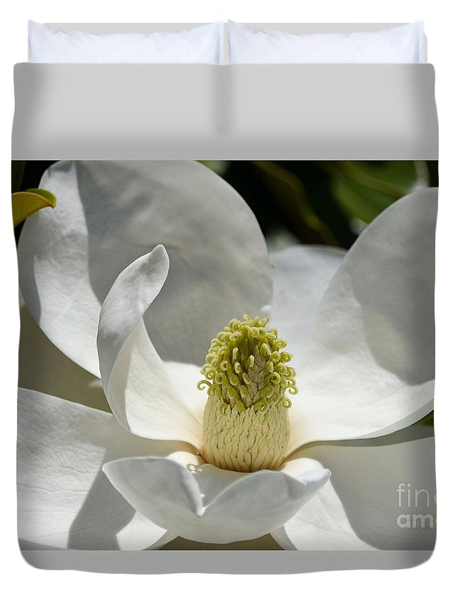 Magnolia Duvet Cover featuring the photograph White Magnolia Macro by Turtle Shoaf
