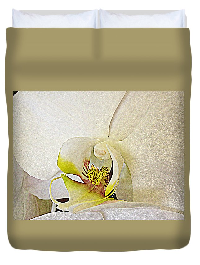 Flowers Duvet Cover featuring the photograph White Orchid by Bonita Brandt