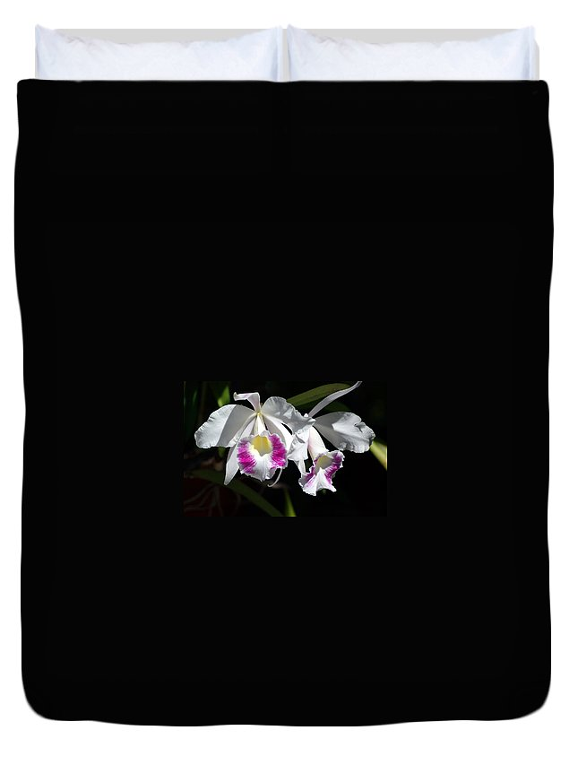 Photography Duvet Cover featuring the photograph White Orchids by Susanne Van Hulst