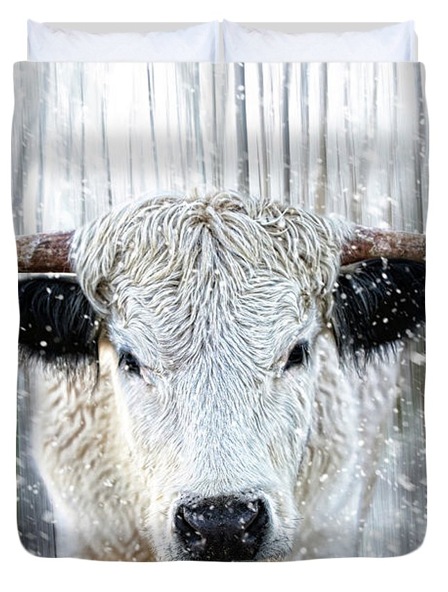 Rare Duvet Cover featuring the photograph White Park Cattle In The Snow by Les McLuckie