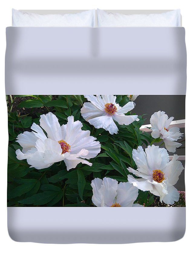 White Peony In May Duvet Cover featuring the photograph White Peony by Connie Du
