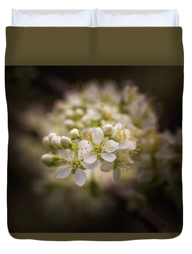 Plum Duvet Cover featuring the photograph White Plum Blossom- 2 by Calazone's Flics