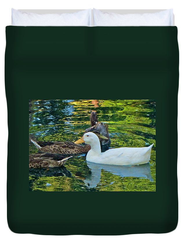 Photograph Duvet Cover featuring the photograph White Reflection by Gwyn Newcombe