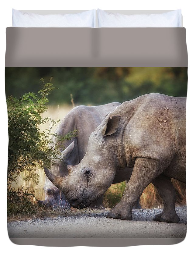 Rhino Duvet Cover featuring the photograph White Rhino by Johanneke Kroesbergen-Kamps