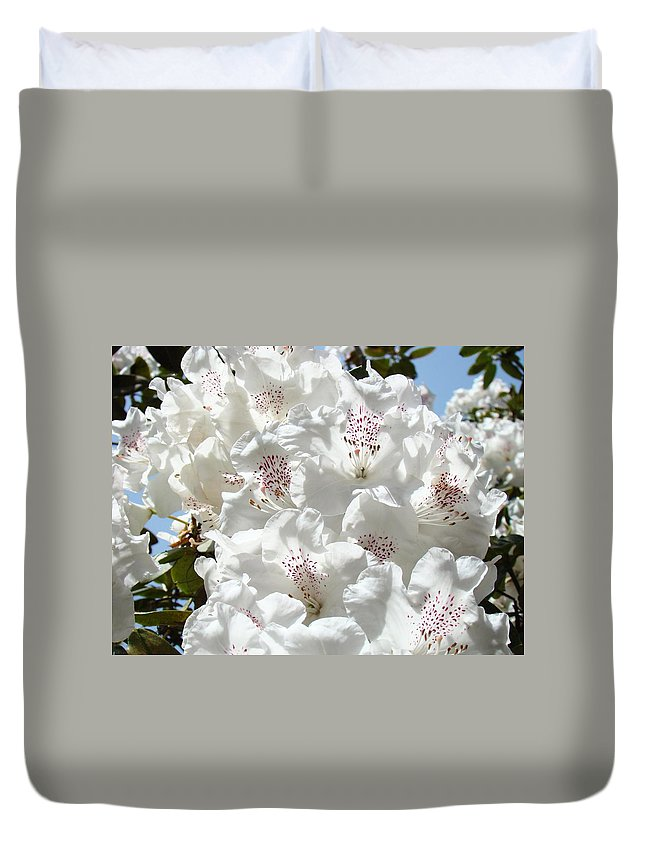 Rhodies Duvet Cover featuring the photograph White Rhododendrons Flowers Art Prints Baslee Troutman by Baslee Troutman