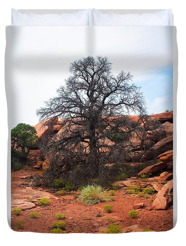 Canyonlands Duvet Cover featuring the photograph White Rim Overlook Trail Tree by Kathleen Garman