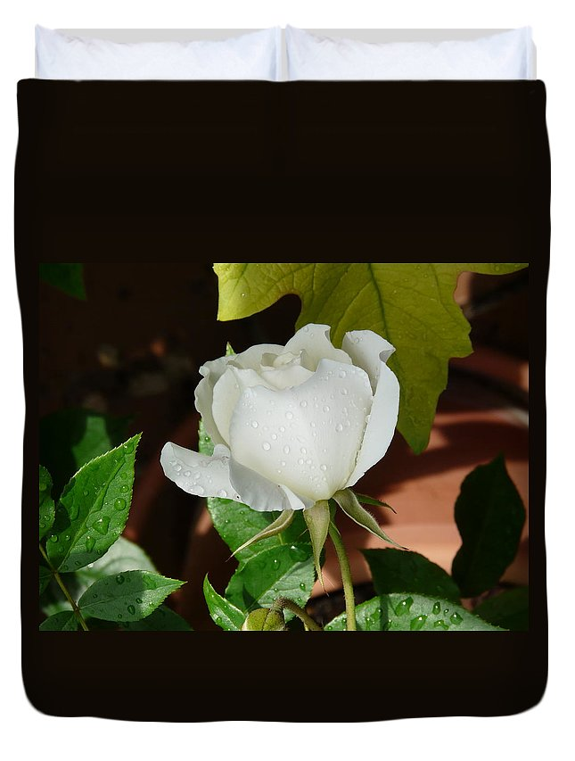 Rose Duvet Cover featuring the photograph White Rose After Rain 1 by Valerie Ornstein