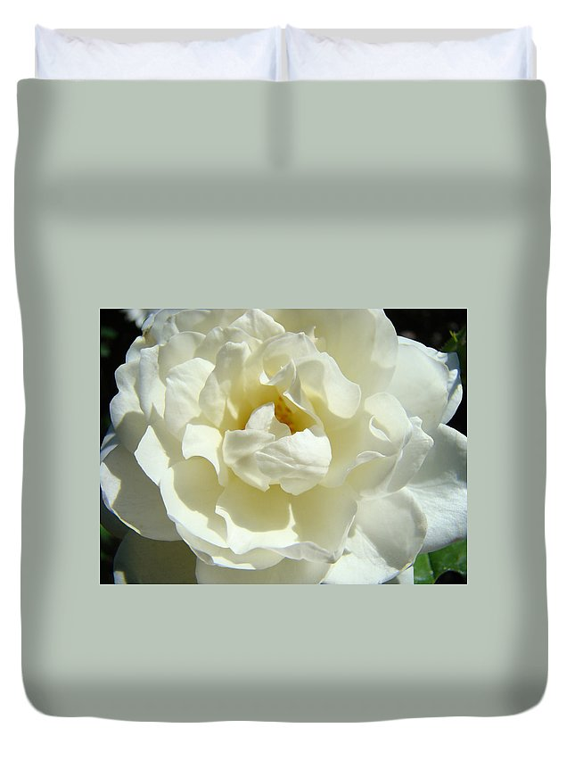 Rose Duvet Cover featuring the photograph White Rose Art Prints Summer Sunlit Roses Baslee Troutman by Baslee Troutman