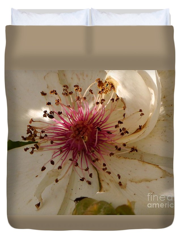 White Rose Duvet Cover featuring the photograph White Rose Centerpiece by Christiane Schulze Art And Photography