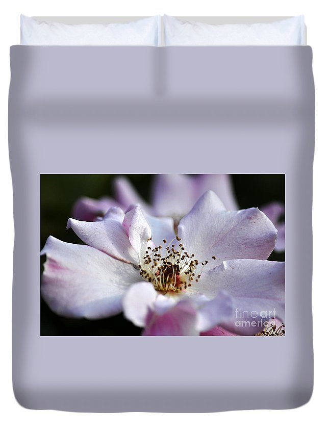 Clay Duvet Cover featuring the photograph White Rose by Clayton Bruster