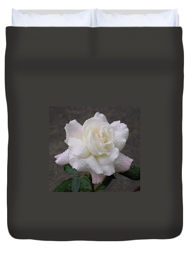 White Duvet Cover featuring the photograph White Rose In Rain - 3 by Shirley Heyn
