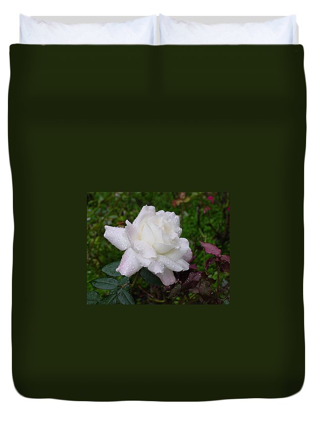 Pink Duvet Cover featuring the photograph White Rose In Rain by Shirley Heyn