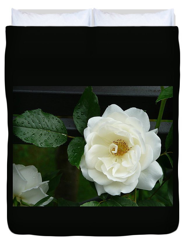 Rose Duvet Cover featuring the photograph White Rose by Valerie Ornstein