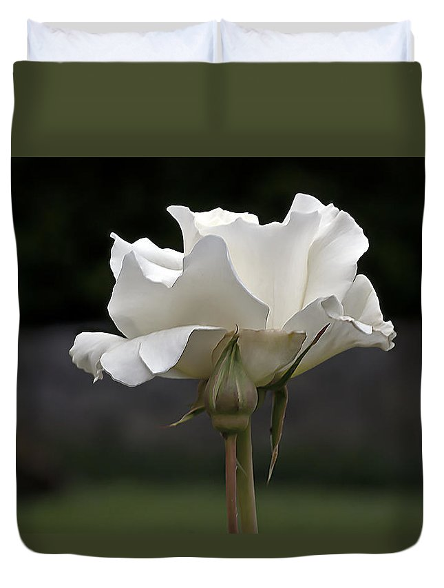White Simplicity Duvet Cover featuring the photograph White Simplicity Rose Profile by Emerald Studio Photography