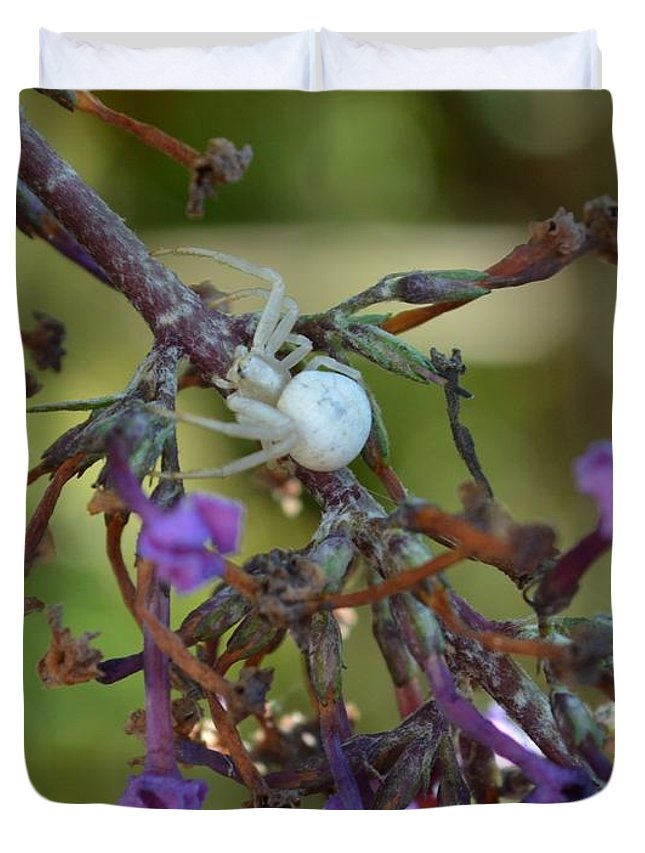 Butterfly Bush Duvet Cover featuring the photograph White Spider In Butterfly Bush by Manon Ramakers