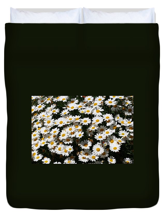 White Duvet Cover featuring the photograph White Summer Daisies by Christine Till