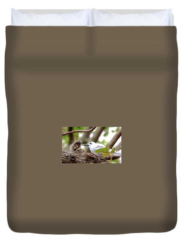 Duvet Cover featuring the photograph White Terns Koa And Parent...bird Love by Melody Bentz