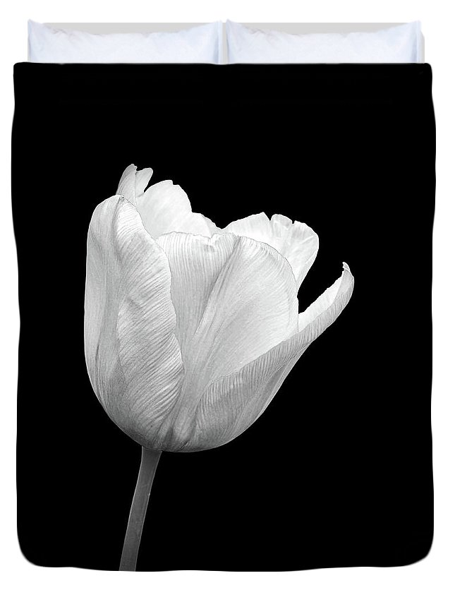 White Tulip Duvet Cover featuring the photograph White Tulip Open by Gill Billington