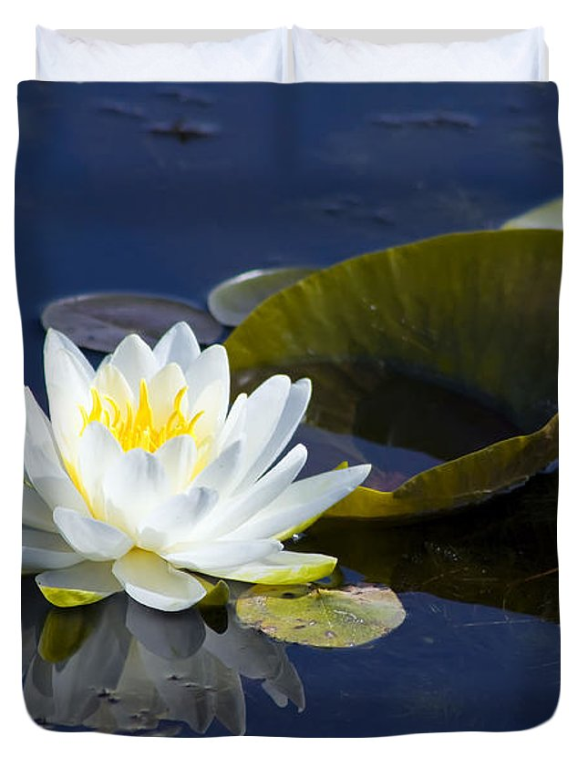 Flower Duvet Cover featuring the photograph White Waterlily by Teresa Zieba