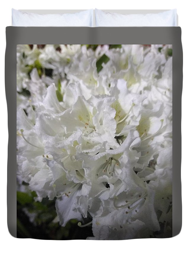 Duvet Cover featuring the photograph White Wit by Danielle Reaves