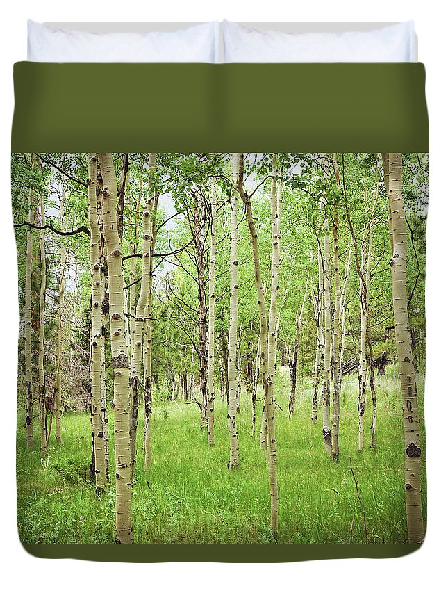 Trees Duvet Cover featuring the photograph White Woods by Megan Swormstedt
