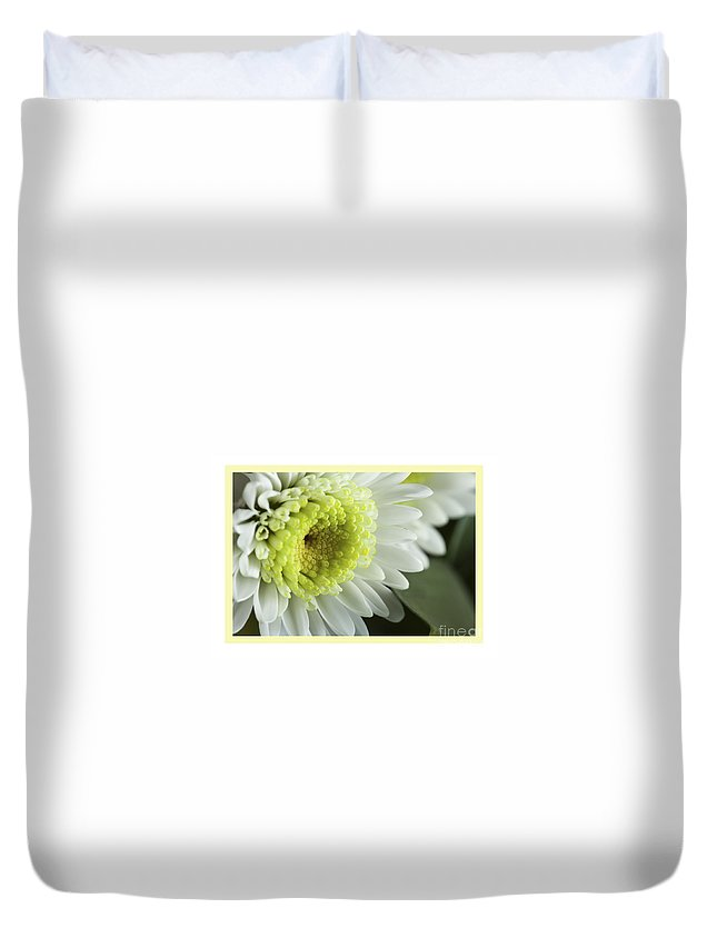 Flowers Duvet Cover featuring the photograph White Mum Card by Donna Crider