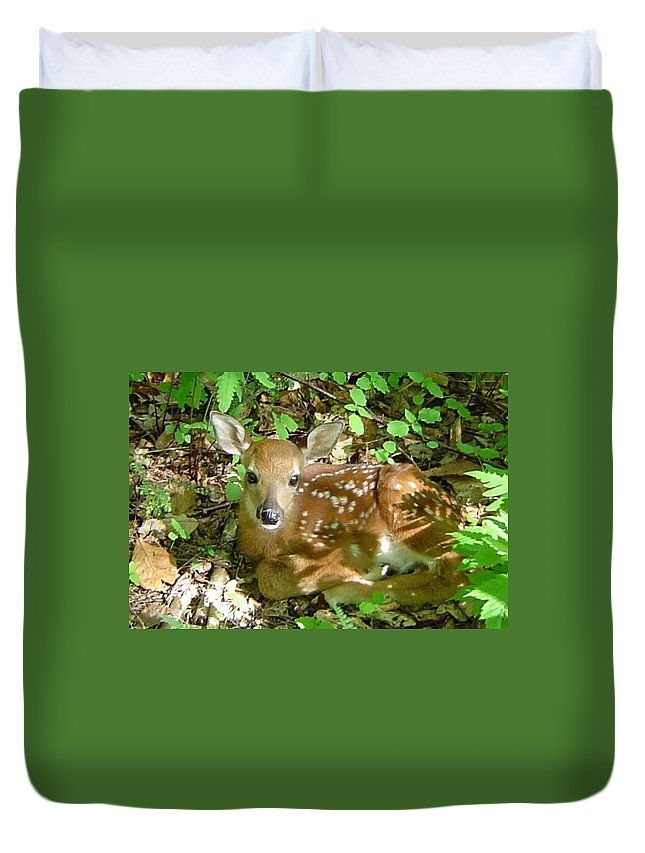 Fawn Duvet Cover featuring the photograph Whitetail Fawn II by James Berger