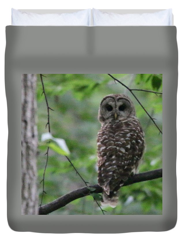 Owl Duvet Cover featuring the photograph Who? by Bill Helman