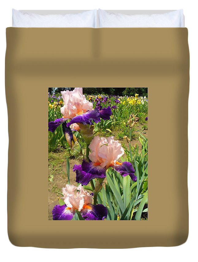 Iris Duvet Cover featuring the photograph Who Could Ask For Anything More by Peggy King