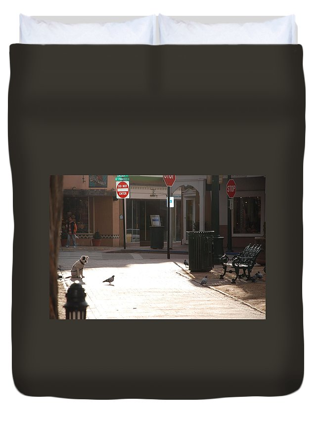 Dog Duvet Cover featuring the photograph Why Question Mark by Rob Hans
