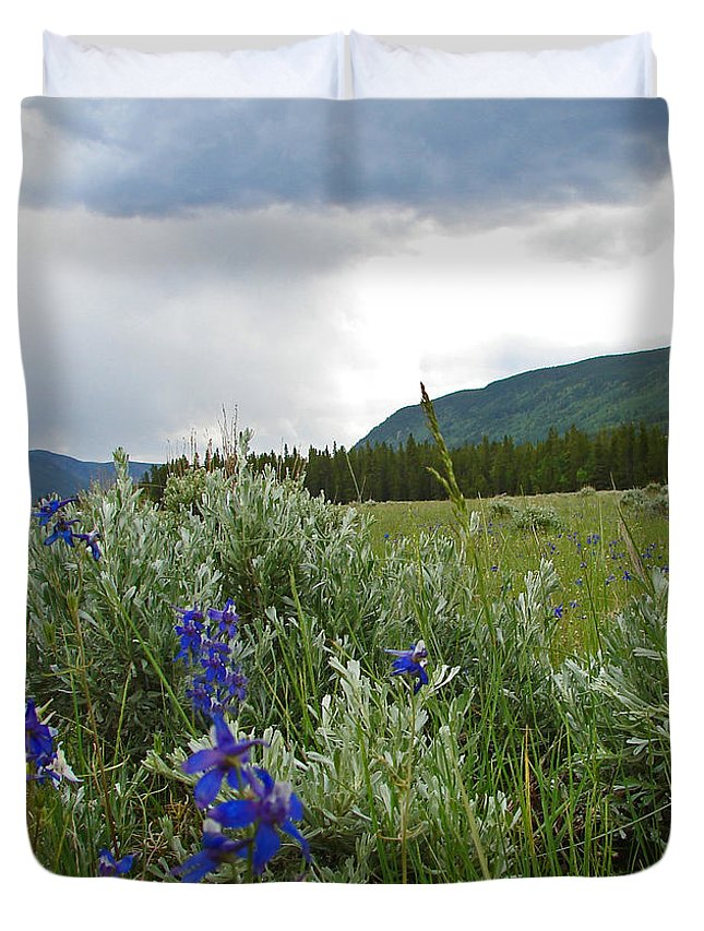 Wild Flowers Duvet Cover featuring the photograph Wild Delphinium by Heather Coen