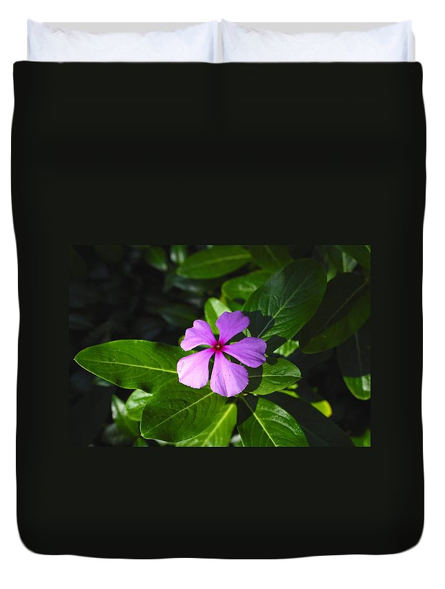 Beautiful Duvet Cover featuring the photograph Wild Flower by David Lee Thompson