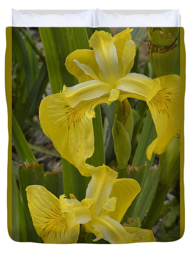 Yellow Duvet Cover featuring the photograph Wild Lilly by Tammy Stoner