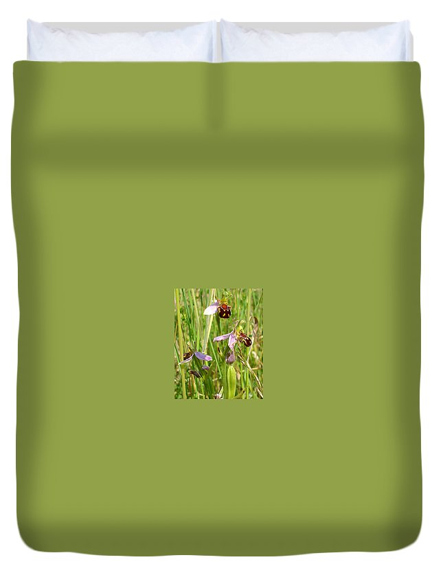 Flora Duvet Cover featuring the photograph Wild Meadow Bee Orchids by Susan Baker