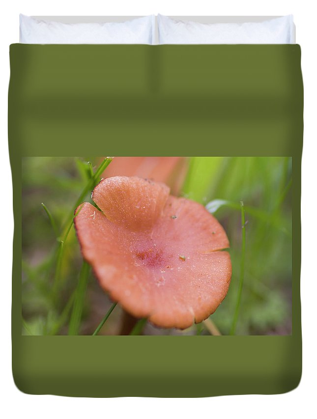 Agaric Duvet Cover featuring the photograph Wild Mushroom 2 by Bob Corson