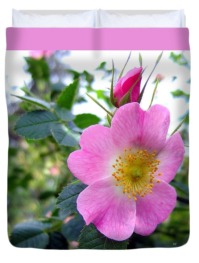 Wild Roses Duvet Cover featuring the photograph Wild Roses 2 by Will Borden