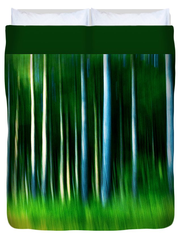 Abstract Duvet Cover featuring the photograph Wild Stripes by Dorit Fuhg