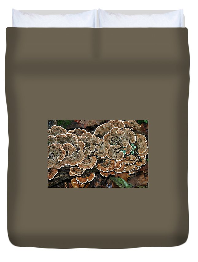 Wild Thing Duvet Cover featuring the photograph Wild Thing by Wanda Gancarz