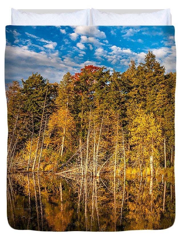 Steve Harrington Duvet Cover featuring the photograph Wilderness Pond 3 by Steve Harrington
