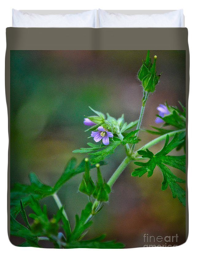Flower Duvet Cover featuring the photograph Wildflower 1 by Karin Everhart