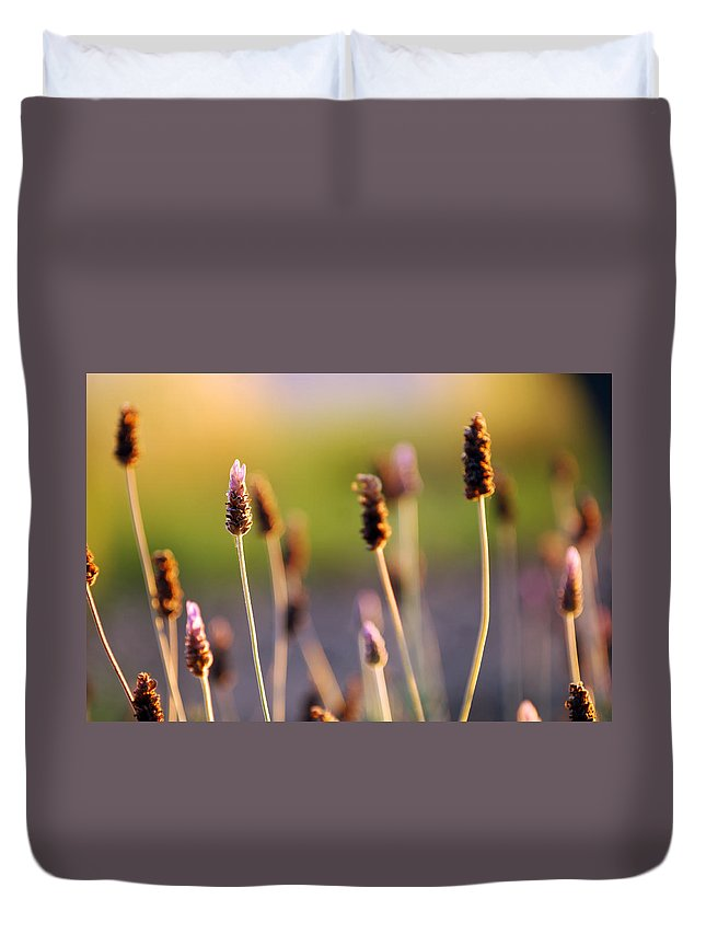 Nature Duvet Cover featuring the photograph Wildflower 2 by Jill Reger