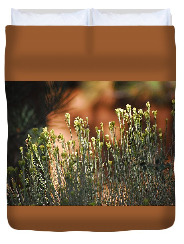 Flowers Duvet Cover featuring the photograph Wildflowers by Cheryl Kostanesky