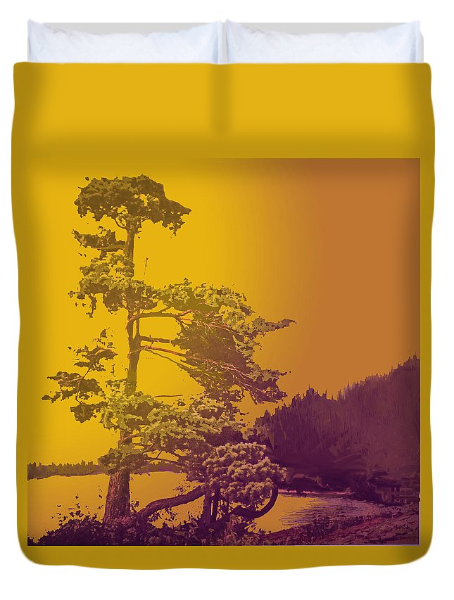 Pine Duvet Cover featuring the photograph Windblown At Twilight by Ian MacDonald