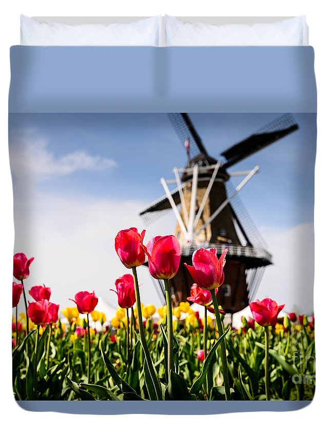 Tulips Duvet Cover featuring the photograph Windmill Island Tulip Gardens by Patrick Shupert