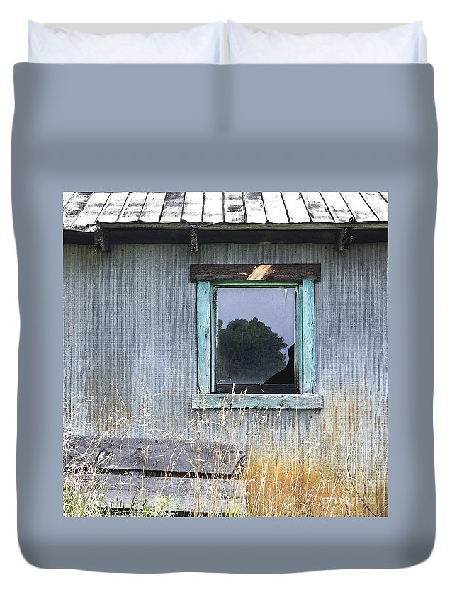 Window Duvet Cover featuring the photograph Window Framed In Aqua by Glennis Siverson