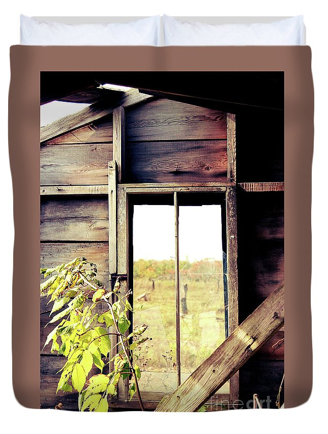 Window Duvet Cover featuring the photograph Window To Autumn by Nikki Vig