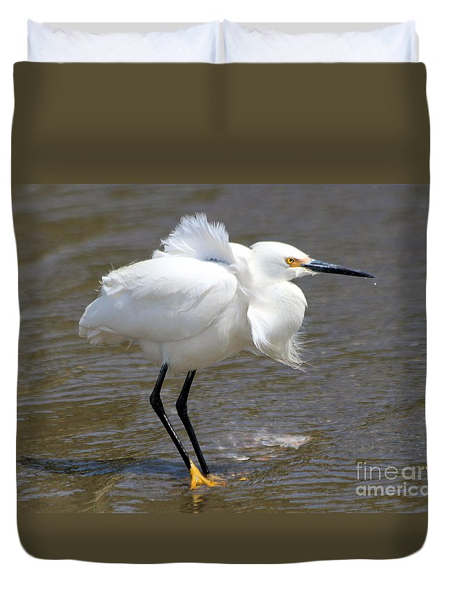 Wild Life Duvet Cover featuring the photograph Windy Day by Irina Hays