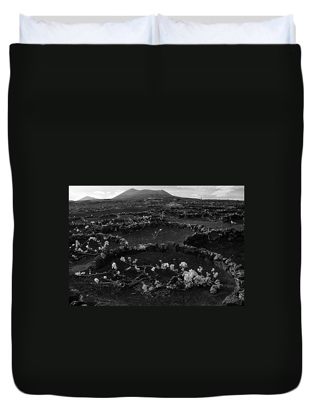 Lehtokukka Duvet Cover featuring the photograph Wine 2 Bw by Jouko Lehto